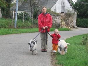 promenade en laisse - enrichissement de l'environnement - Cochon nain, cochon vietnamien, mini cochon, cochon miniature désignent le meme type de cochon ! Attention aux arnaques ! - association GroinGroin